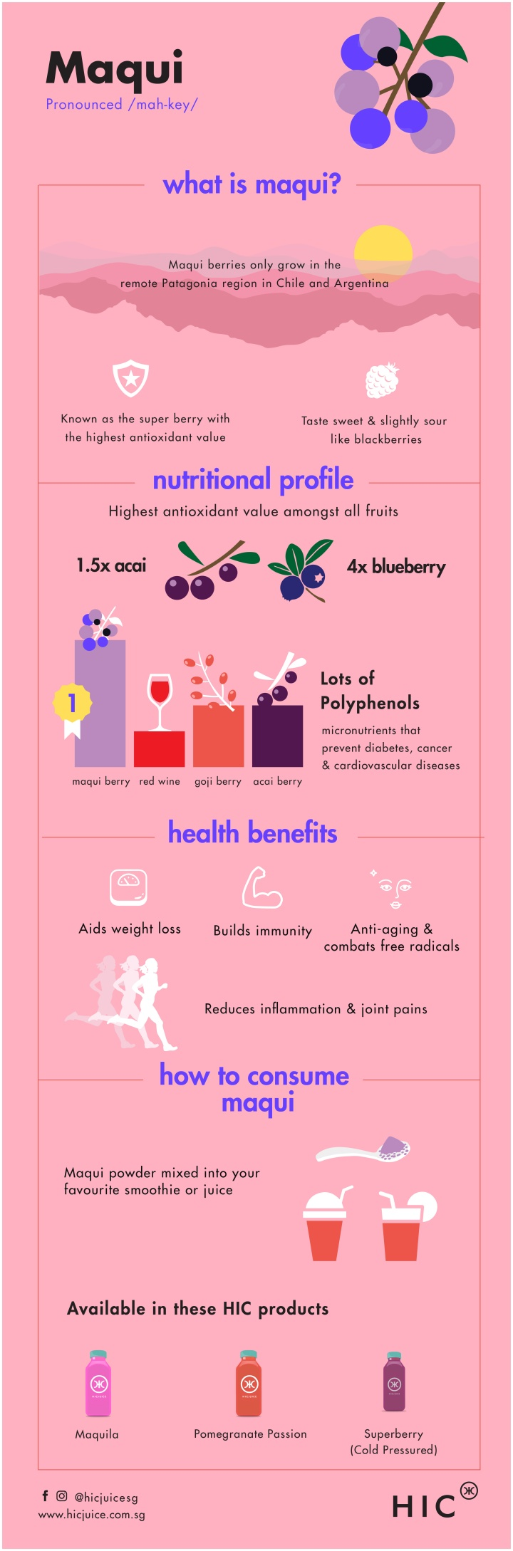 Maqui berry health benefits infographic